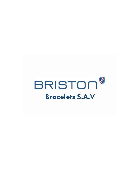 Briston S.A.V